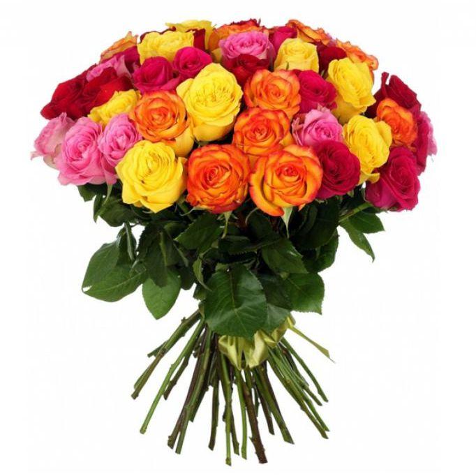 Купить 51 розу в москве недорого